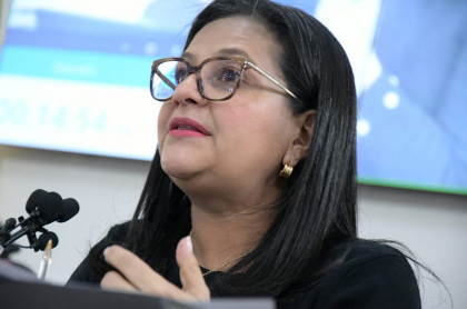 Carmen Teresa Castañeda Villamizar