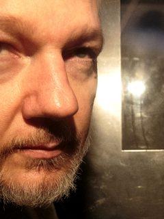 Julian Assange sí habría interferido en elecciones de EE. UU., desde Embajada de Ecuador