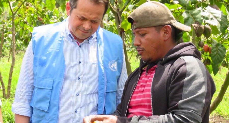 Consejo de Seguridad de la ONU en Colombia