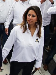 Foto de la pinta de la primera dama en el desfile del 20 de Julio