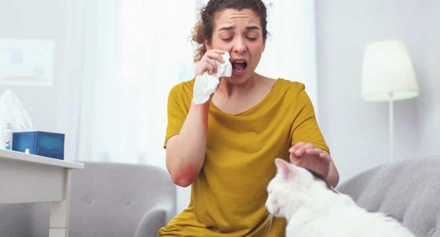Mujer alérgica a los gatos