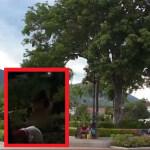 Parque principal de Santa Fe de Antioquia
