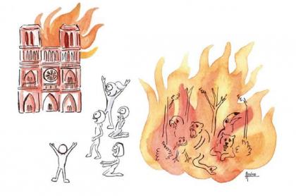 Dibujo sobre incendio en Notre Dame y Amazonas