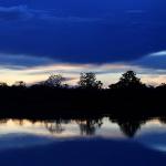 Vista del río Mamiraua