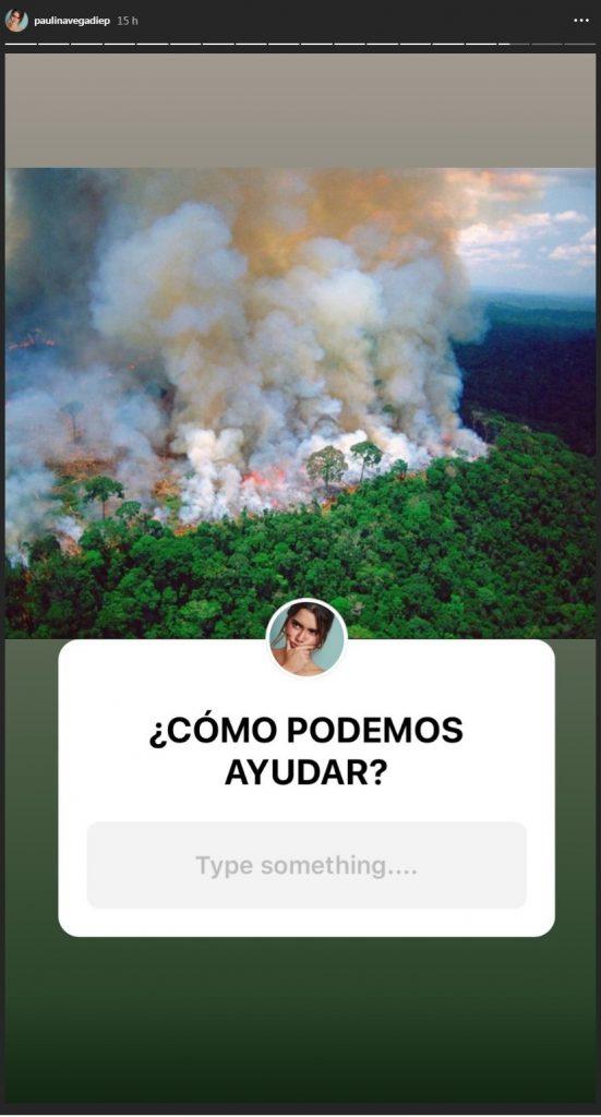 Historia Paulina Vega