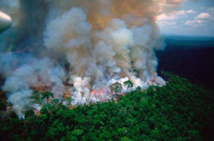 Foto falsa de incendio de la Amazonia