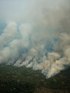 Al fin comenzó lucha contra el fuego y crímenes ambientales en el Amazonas