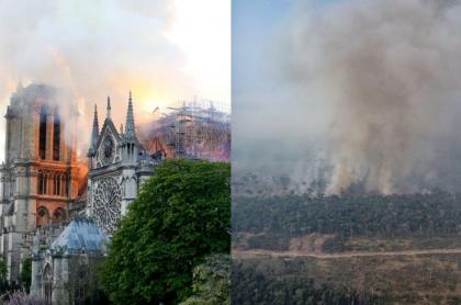 Notre Dame y la Amazonia