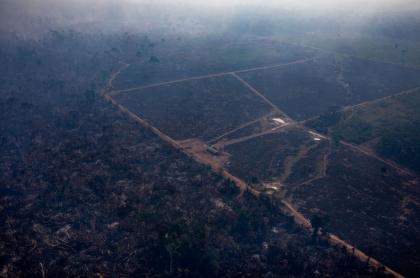 Incendios Amazonia
