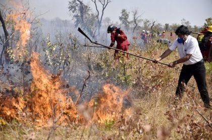 Evo Morales, presidente de Bolivia, ayuda a apagar incendios