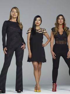 Paula Barreto, Caterin Escobar, Amparo Grisales, Carla Giraldo y Paola Rey, actrices.
