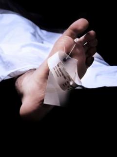 Envuelto en bolsas negras y lleno de moscas, encuentran muerto a hombre debajo de su cama