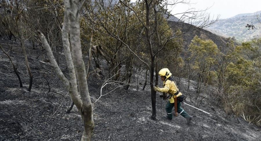 Incendio forestal en Colombia