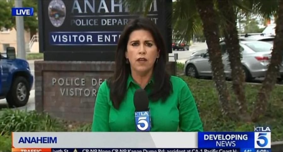 Sara Welch, periodista de EE. UU.