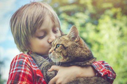 Niño alzando y besando a gato