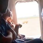 Pasajera de avión