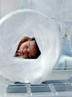 Está por nacer el primer útero artificial del mundo que podría salvar miles de vidas