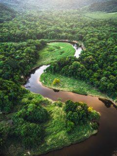 Colombia recibirá millonaria donación de Europa para la protección del medio ambiente