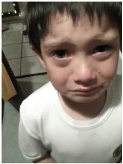 [Video] Desconsolado niño llora por matar a hormiga con su moto de juguete