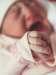 Que no le aterrice cigüeña ajena: 34 % de pruebas de paternidad en Bogotá salen negativas