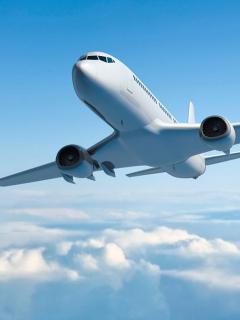 Irresponsable piloto dejó que pasajera tomara el control de un avión con viajeros