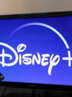 En su estreno, Disney Plus corrió la misma suerte caótica que Disneylandia