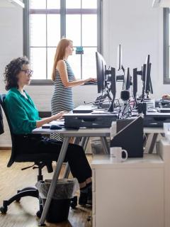 Abren convocatoria de 150 vacantes (unas de profesionales) para trabajar Quebec, Canadá