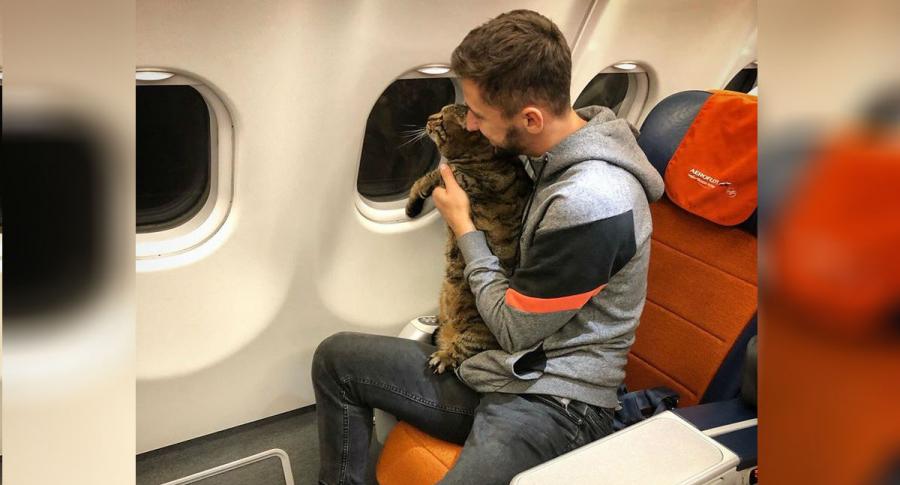 Ruso vuela con su gato.