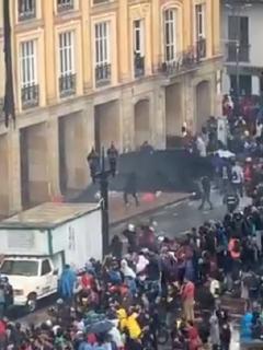 [Videos] Delincuentes arrancan protección de Alcaldía de Bogotá y le prenden fuego