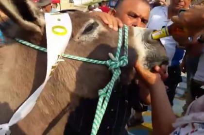Maltrato animal en Mesitas.
