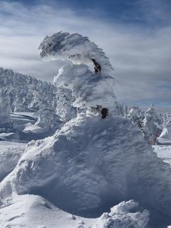 Se quemó su cabaña y sobrevivió tres semanas a más de 20 grados bajo 0 en Alaska