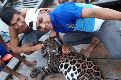 Matan a felino en Iquitos (Perú)