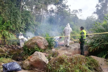 Rescate de menores atacados por abejas en San Bernardo, Cundinamarca