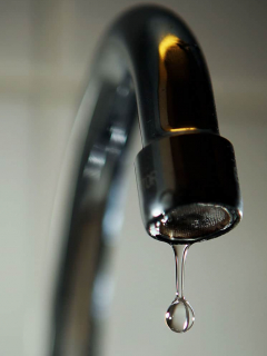 Agua, grifo
