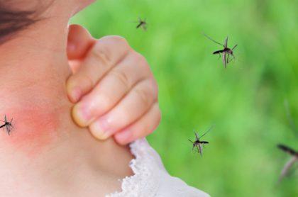 Dengue estaría cobrando la vida de muchos colombianos.