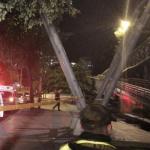 Puente carrera Novena acordonado policía