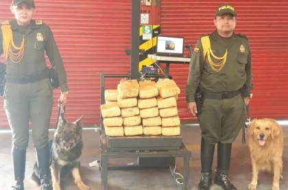 Marihuana incautada en El Dorado