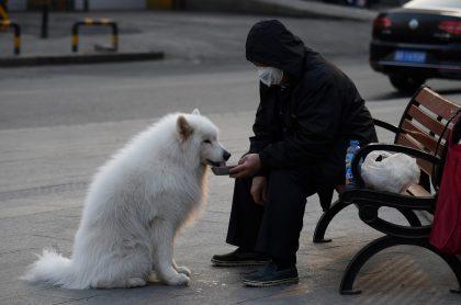 Hombre con tapabocas alimentando perro