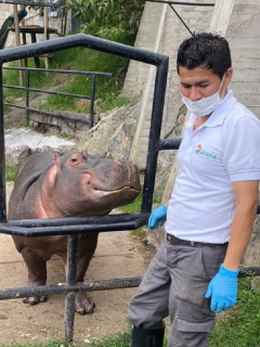 Animales de zoológico de Santa Cruz