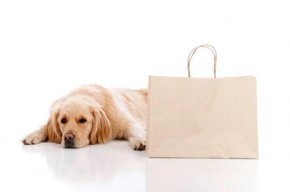 Perro bolsa