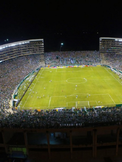 Estadio-de-Palmaseca