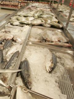 Venta de pescado durante en Semana Santa