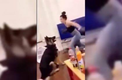 Mujer maltrata a perro
