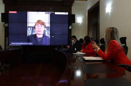 Mininterior, Alicia Arango, en reunión con la Cámara de Representantes