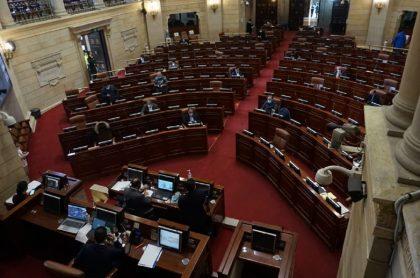 Sesión semipresencial en la Cámara