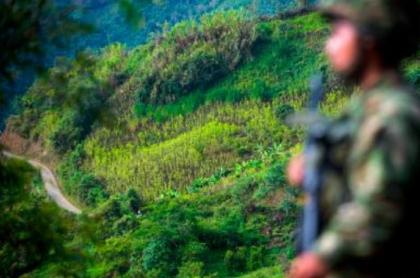 Culpan a militares por muerte de campesino en Antioquia