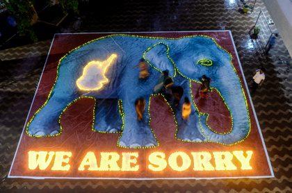 Elefanta - India