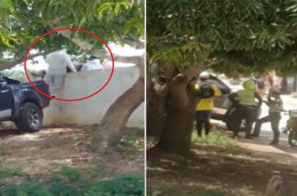 Graban entierro de hombre en Pivijay, Magdalena