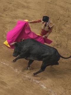 Corrida de toros en Bogotá