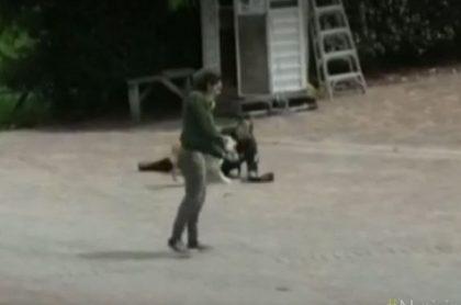 Hombre genera pánico luego de robar una pistola
